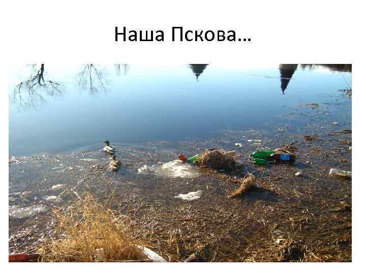 Наша Пскова…