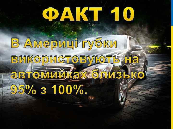 ФАКТ 10 В Америці губки використовують на автомийках близько 95% з 100%.