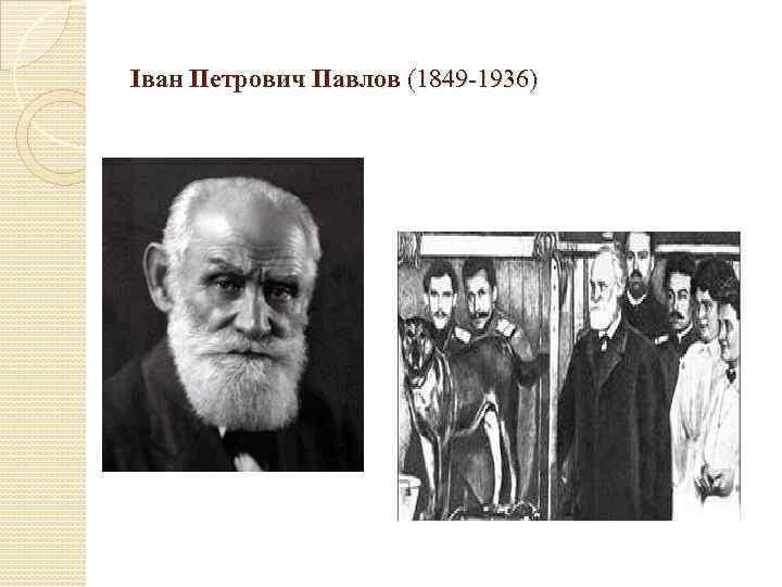 Іван Петрович Павлов (1849 -1936)