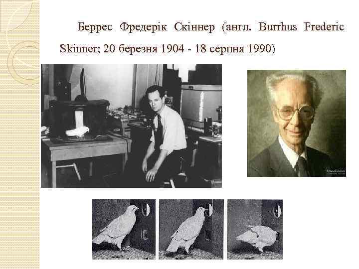 Беррес Фредерік Скіннер (англ. Burrhus Frederic Skinner; 20 березня 1904 - 18 серпня 1990)