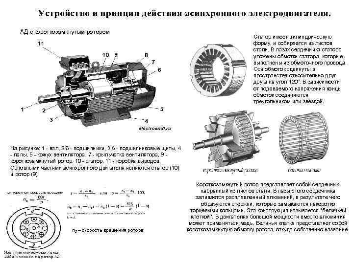 неплохо фото схема регулирование асинхронного двигателя википедии есть