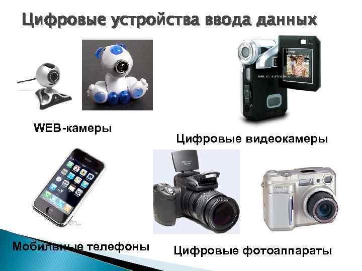 Цифровые устройства ввода данных WEB-камеры Мобильные телефоны Цифровые видеокамеры Цифровые фотоаппараты