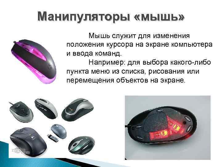 Манипуляторы «мышь» Мышь служит для изменения положения курсора на экране компьютера и ввода команд.