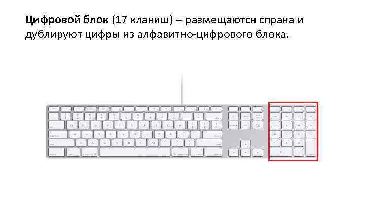 Цифровой блок (17 клавиш) – размещаются справа и дублируют цифры из алфавитно-цифрового блока.