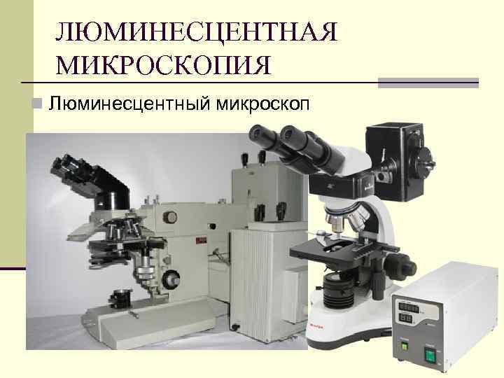 ЛЮМИНЕСЦЕНТНАЯ МИКРОСКОПИЯ n Люминесцентный микроскоп