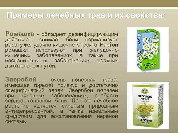 Примеры лечебных трав и их свойства: Ромашка - обладает дезинфицирующим действием, снимает боли, нормализует