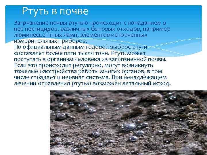 Ртуть в почве Загрязнение почвы ртутью происходит с попаданием в нее пестицидов, различных бытовых