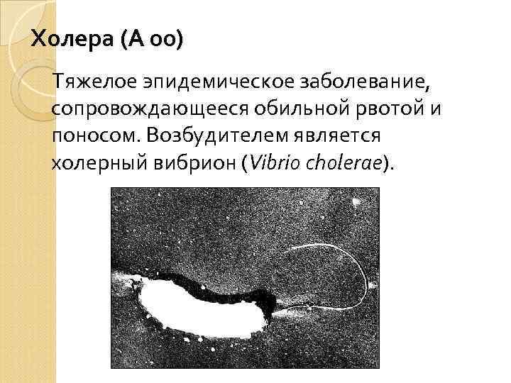 Холера (А 00) Тяжелое эпидемическое заболевание, сопровождающееся обильной рвотой и поносом. Возбудителем является холерный