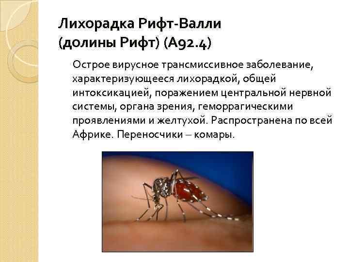 Лихорадка Рифт-Валли (долины Рифт) (А 92. 4) Острое вирусное трансмиссивное заболевание, характеризующееся лихорадкой, общей