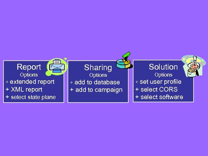 Report Options Solution Sharing Options + extended report + XML report + select state