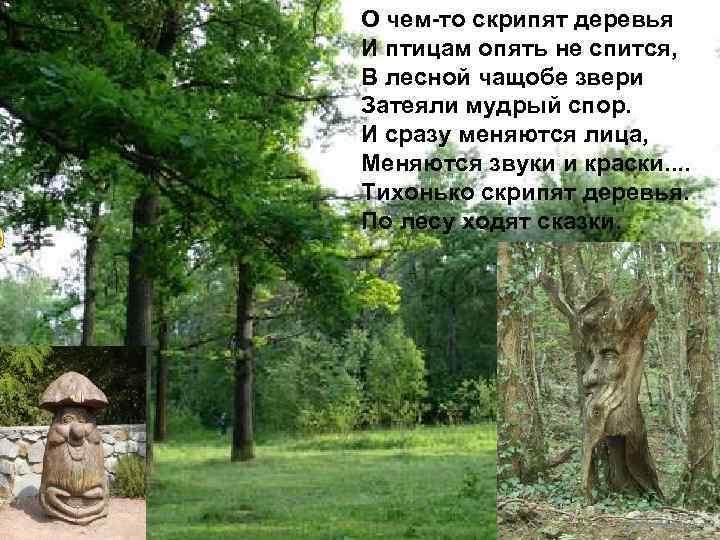 О чем-то скрипят деревья И птицам опять не спится, В лесной чащобе звери Затеяли