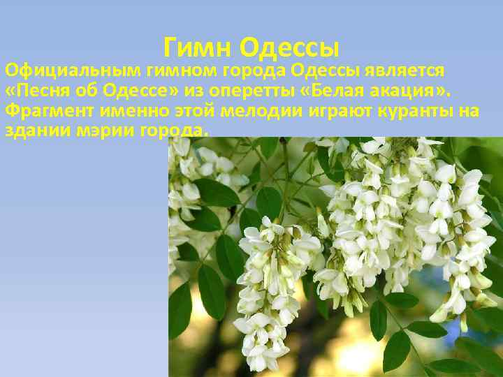 Гимн Одессы Официальным гимном города Одессы является «Песня об Одессе» из оперетты «Белая акация»