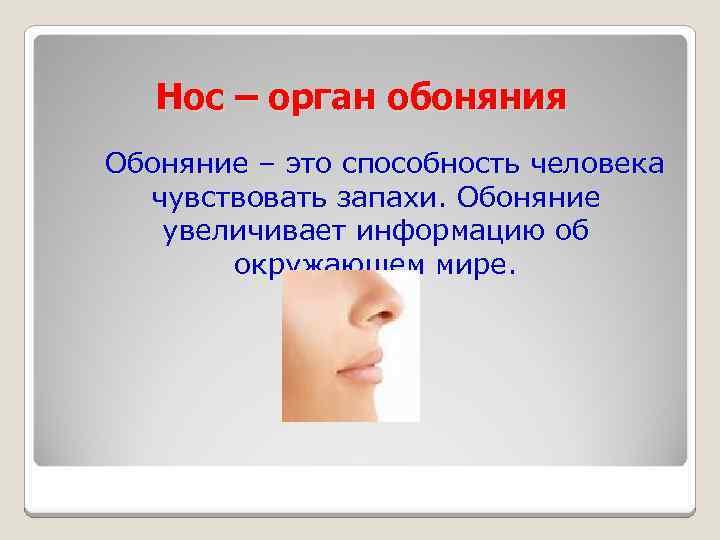 Нос – орган обоняния Обоняние – это способность человека чувствовать запахи. Обоняние увеличивает информацию