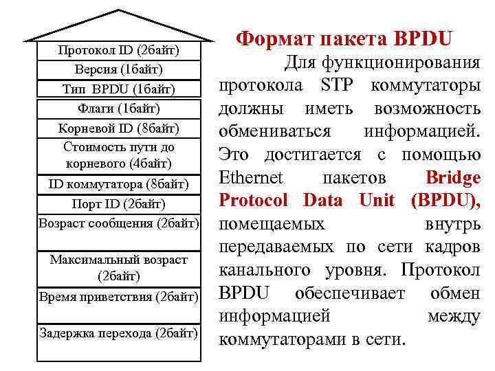 Протокол ID (2 байт) Версия (1 байт) Тип BPDU (1 байт) Флаги (1 байт)