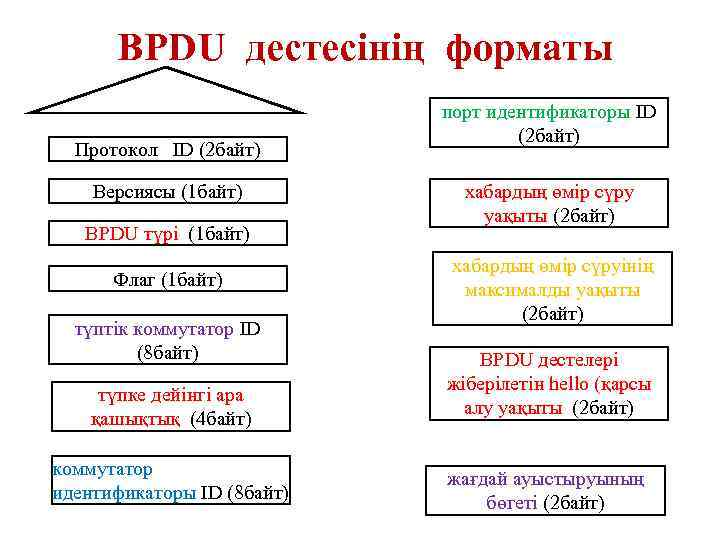 BPDU дестесінің форматы Протокол ID (2 байт) Версиясы (1 байт) BPDU түрі (1 байт)