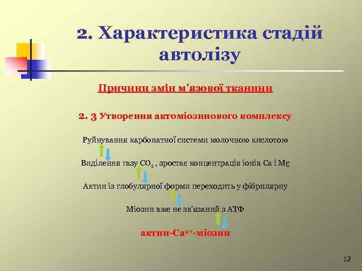 2. Характеристика стадій автолізу Причини змін м'язової тканини 2. 3 Утворення актоміозинового комплексу Руйнування