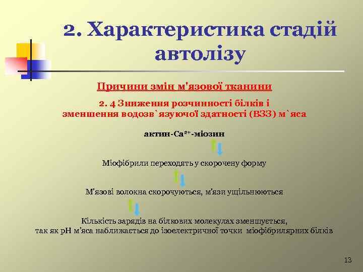 2. Характеристика стадій автолізу Причини змін м'язової тканини 2. 4 Зниження розчинності білків і