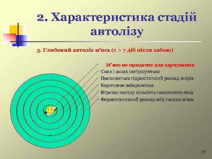 2. Характеристика стадій автолізу 5. Глибокий автоліз м'яса (τ > 7 діб після забою)