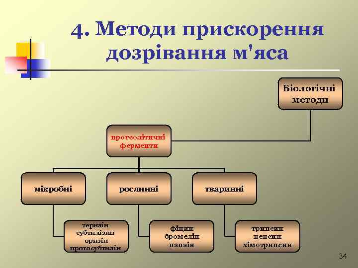 4. Методи прискорення дозрівання м'яса Біологічні методи протеолітичні ферменти мікробні рослинні теризін субтилізин оризін