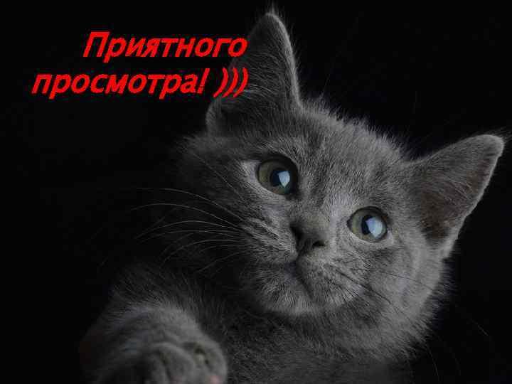 Приятного просмотра! )))