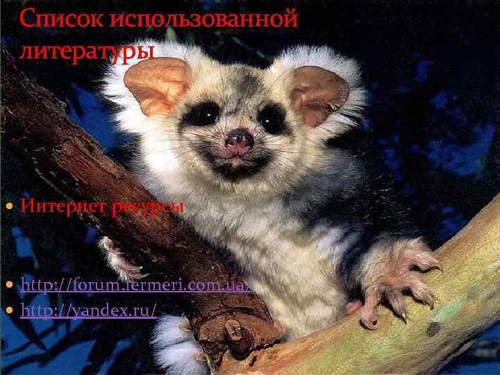 Список использованной литературы Интернет ресурсы http: //forum. fermeri. com. ua/ http: //yandex. ru/