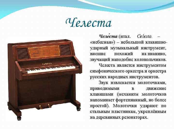Челеста музыкальный инструмент картинка