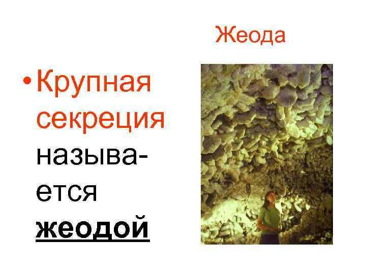 Жеода • Крупная секреция называется жеодой