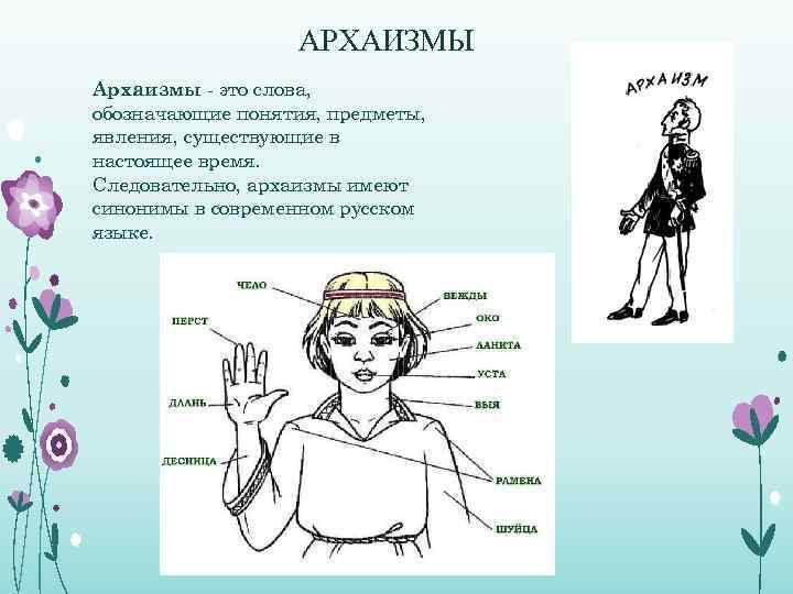 АРХАИЗМЫ Архаизмы - это слова, обозначающие понятия, предметы, явления, существующие в настоящее время. Следовательно,