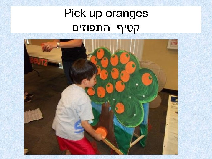 Pick up oranges קטיף התפוזים