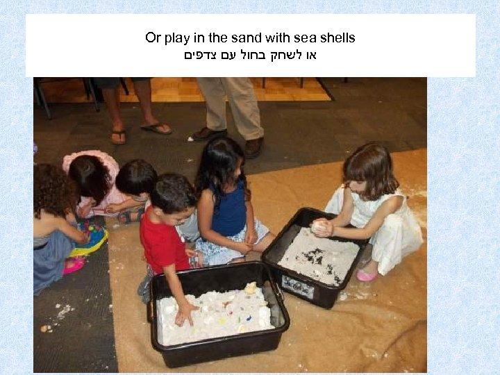 Or play in the sand with sea shells או לשחק בחול עם צדפים