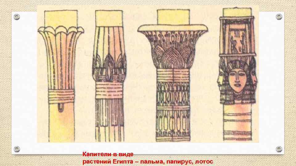 Капители в виде растений Египта – пальма, папирус, лотос