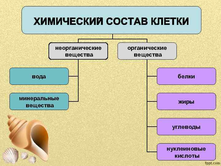 Неорганически вещества таблица картинки