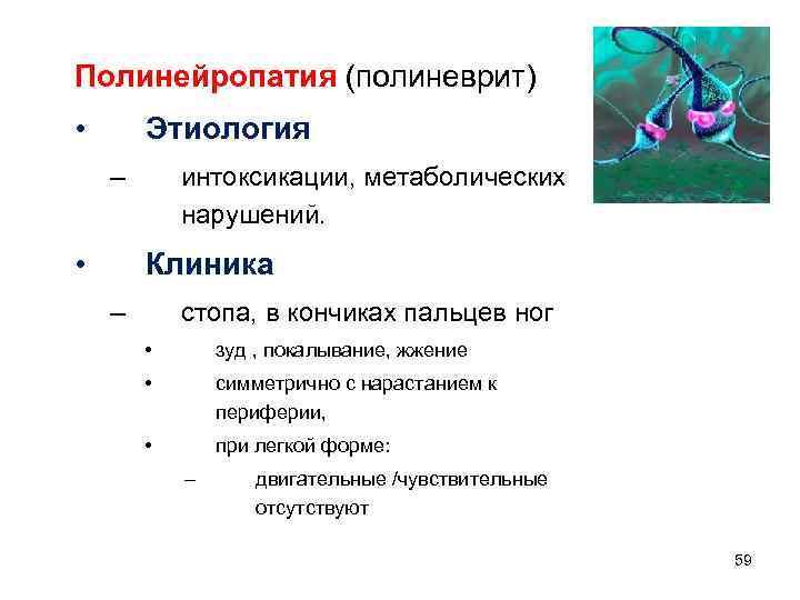 Полинейропатия (полиневрит) • Этиология – • интоксикации, метаболических нарушений. Клиника – стопа, в кончиках
