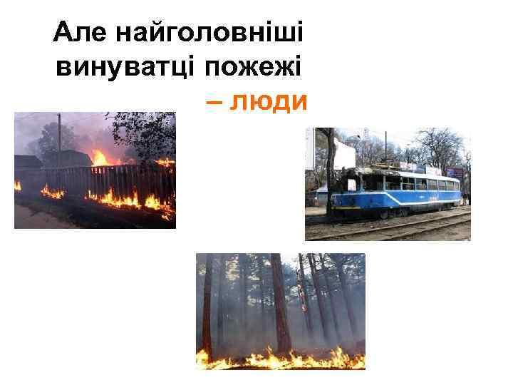 Але найголовніші винуватці пожежі – люди