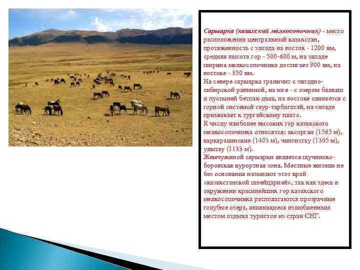 Сарыарка (казахский мелкосопочник) - место расположения центральный казахстан, протяженность с запада на восток -