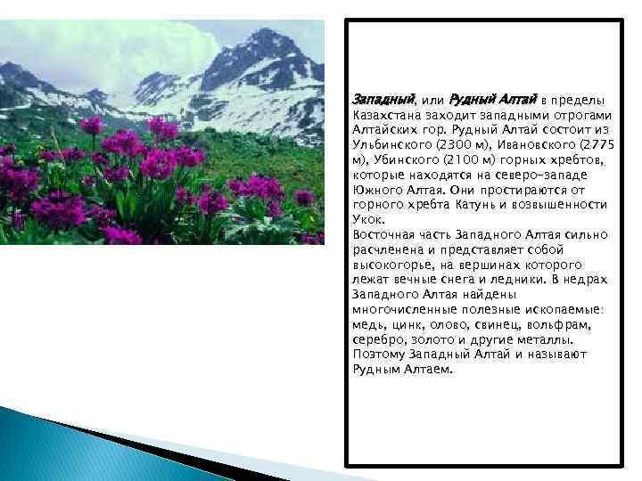Западный, или Рудный Алтай в пределы Казахстана заходит западными отрогами Алтайских гор. Рудный Алтай
