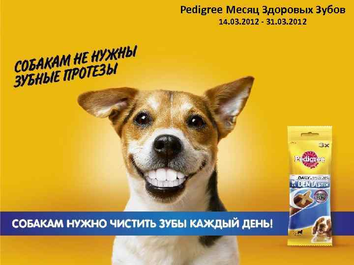 Pedigree Месяц Здоровых Зубов 14. 03. 2012 - 31. 03. 2012