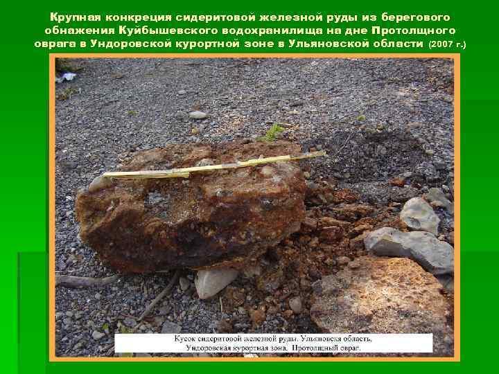 Крупная конкреция сидеритовой железной руды из берегового обнажения Куйбышевского водохранилища на дне Протолщного оврага