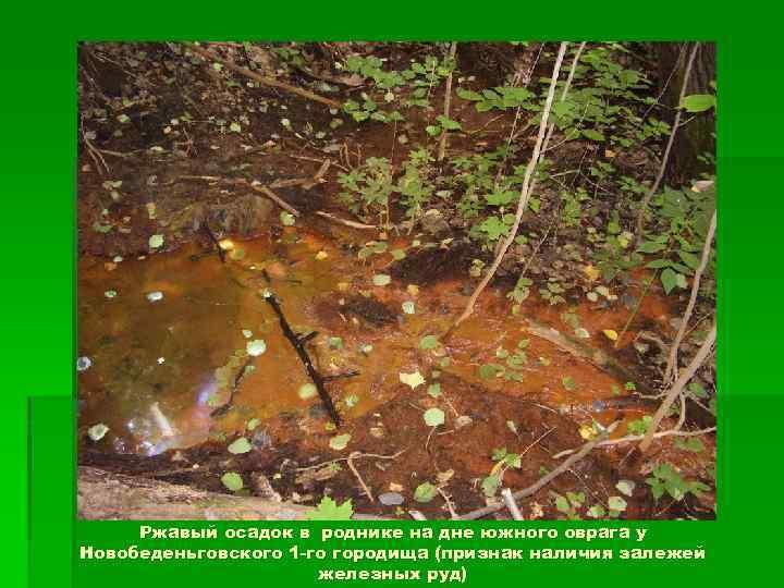 Ржавый осадок в роднике на дне южного оврага у Новобеденьговского 1 -го городища (признак