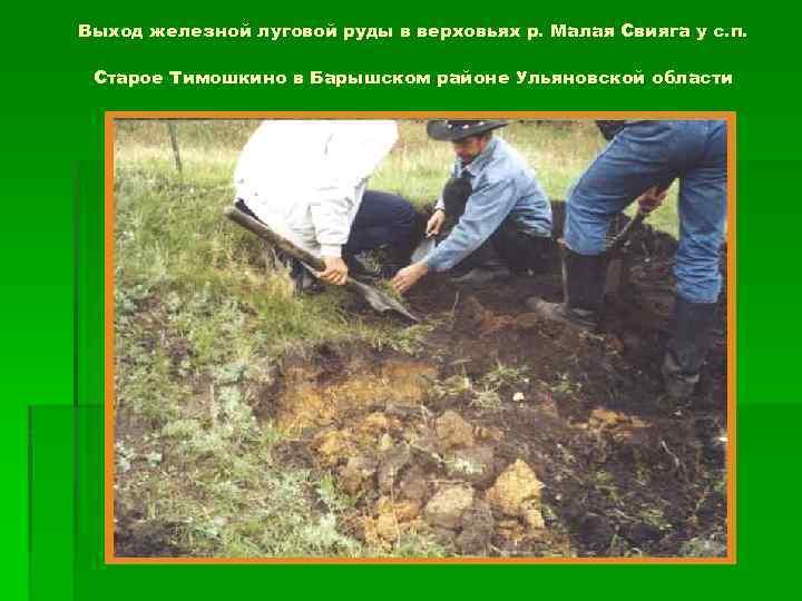 Выход железной луговой руды в верховьях р. Малая Свияга у с. п. Старое Тимошкино