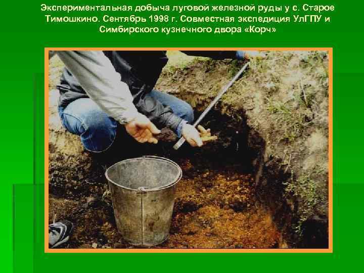 Экспериментальная добыча луговой железной руды у с. Старое Тимошкино. Сентябрь 1998 г. Совместная экспедиция