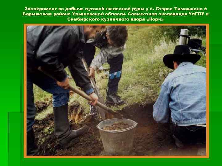 Эксперимент по добыче луговой железной руды у с. Старое Тимошкино в Барышском районе Ульяновской