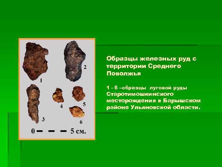 Образцы железных руд с территории Среднего Поволжья 1 - 6 –образцы луговой руды Старотимошкинского