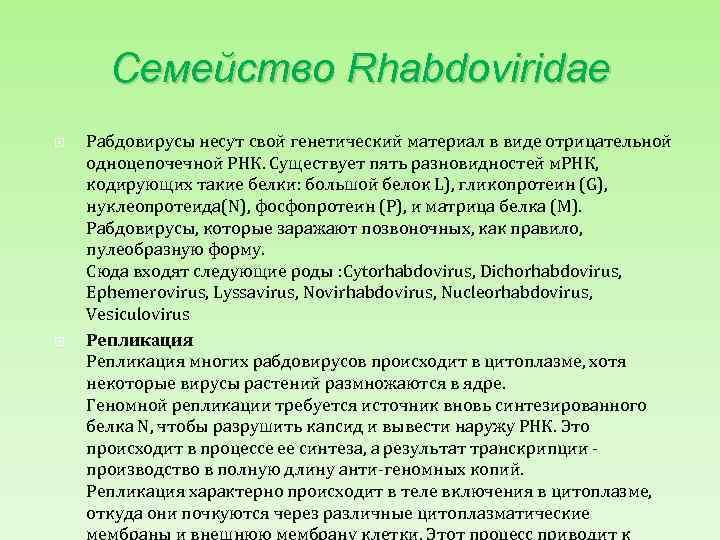 Семейство Rhabdoviridae Рабдовирусы несут свой генетический материал в виде отрицательной одноцепочечной РНК. Существует пять