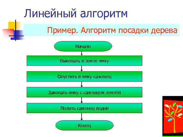 Линейный алгоритм Пример. Алгоритм посадки дерева Начало Выкопать в земле ямку Опустить в ямку