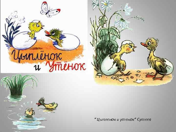 """"""" Цыпленок и утенок"""" Сутеев"""
