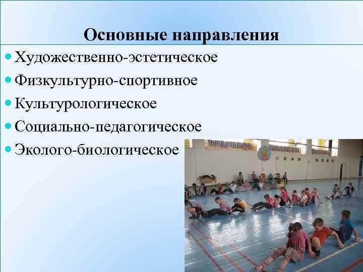Основные направления Художественно-эстетическое Физкультурно-спортивное Культурологическое Социально-педагогическое Эколого-биологическое
