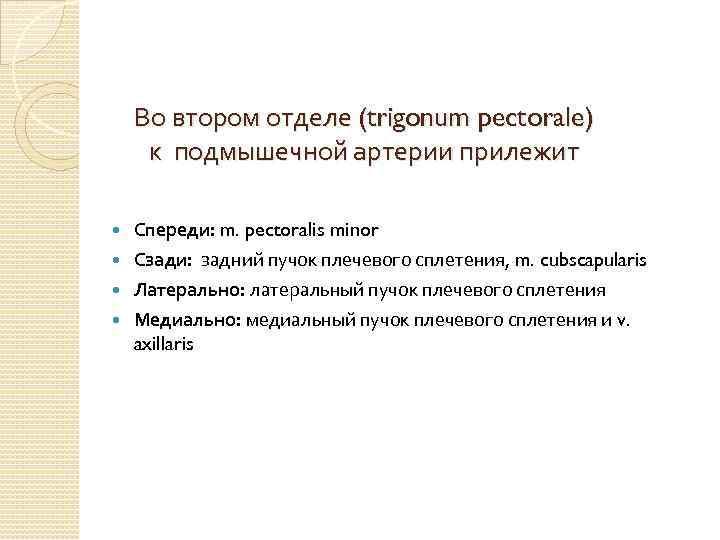 Во втором отделе (trigonum pectorale) к подмышечной артерии прилежит Спереди: m. pectoralis minor Сзади: