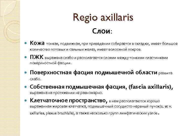 Regio axillaris Слои: Кожа тонкая, подвижная, приведении собирается в складки, имеет большое количество потовых