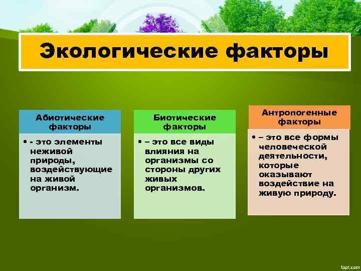 Экологические факторы Абиотические факторы • - это элементы неживой природы, воздействующие на живой организм.
